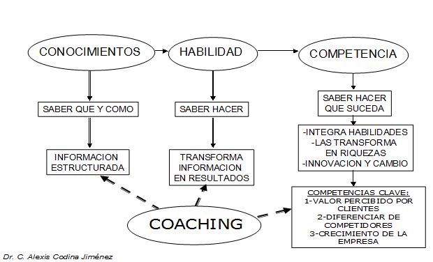 Niveles de actuación del Coaching